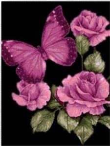 Схема вышивки: Розы и бабочка